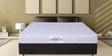 4 inch Coir Biotech Queen Mattress in Light Green Color by Springtek Ortho Coir