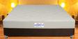 8 inch Coir Latex Memory Mattress in Light Green Color by Springtek Ortho Coir
