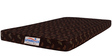 Economical 4 Inches Coir Queen Mattress in Multicolour by Springtek Ortho Coir