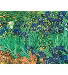 64Arts Canvas 16 x 10 Inch Irises by Vincent Van Gogh Unframed Digital Art Print