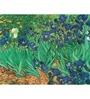 64Arts Canvas 16 x 10 Inch Irises by Vincent Van Gogh Unframed Digital Art Print