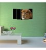 999Store Sun Board 10 x 29 Inch African Lion Durable Painting - Set of 5