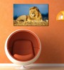 999Store Vinyl Majestic Lion Durable & Washable Wall Sticker
