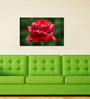 999Store Red Rose Pvc Vinyl 35 x 24 Inch Wooden Framed Digital Art Print