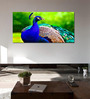 999Store Vinyl 96 x 0.4 x 48 Inch Beautiful Peacock Painting Unframed Digital Art Print