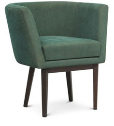 Accent Chair in Green Colour by FurnitureTech