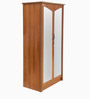 Adriana Two Door Wardrobe in Brown Colour by Godrej Interio
