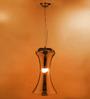 Amerie Ceiling Lamp in Black by Bohemiana