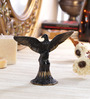 Ahumada Open Wings Eagle Showpiece in Multicolour by Amberville