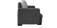 Alexandera Two Seater Sofa in Black & Silver Colour by Auspicious