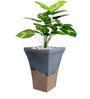 Alai Planter Black by Greymode