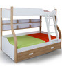 Alex Daisy Columbia Bunk with Trundle Bed - Oak