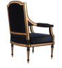 Arm Chair in Blue & Golden Colour by The Yellow Door