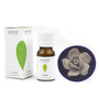 Aroma Treasures Rosemary Essential Oil with Diffuser
