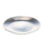 Arttdinox Stainless Steel Dinner Plate - Set of 6