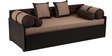 Aster Exemplary Sofa Cum Bed by ARRA