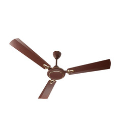 Bajaj Matt Brown Grace DLX Bianco 1200mm Ceiling Fan