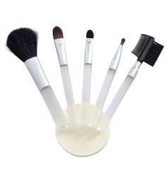 Basic Care Cosmetic Brush Set - 5 Piece (Blusher, eyeliner brush, Lipliner brush, eyebrow brush and foundation brush)
