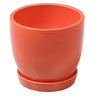 Decardo Red Ceramic Table Top & Saucer