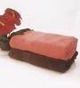 BIANCA Coral & Chocolate 100% Terry Cotton Bath Towel - Set of 2