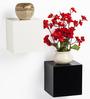 Bluewud Black & White MDF & Duco Colorcube Wall Shelf Set