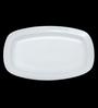 Bp Bharat Fine Bone China Platter - Set of 2