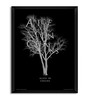Bravado Fibre with Wood Texture 13 x 17 Inch Alice in Chains Tree Framed Posters