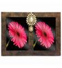Butterfly Homes Brown Wooden 8.5 x 12 Inch Exquisite Dual Single Photo Frame