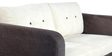 Cassia Two Seater Sofa in White and Dark Brown Colour by CasaCraft