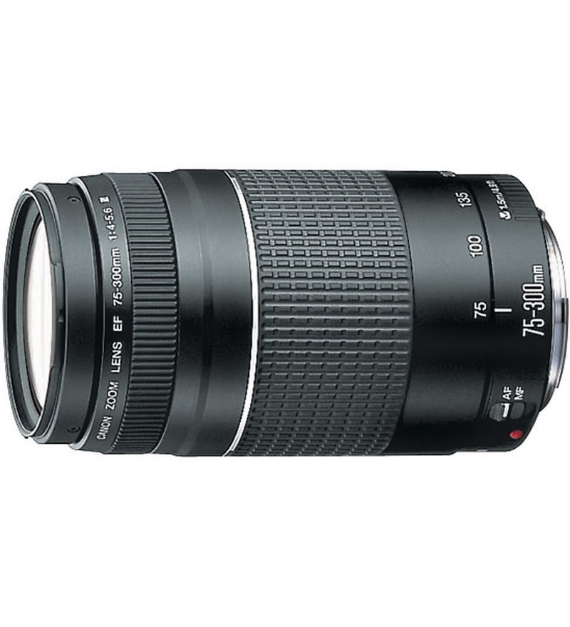 Canon lens ef 75 300mm f 4 5 6 iii usm by canon online for Best lens for furniture photography