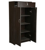 Camel Shoe Cabinet in Brown Colour by Exclusive Furniture