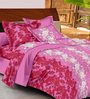 Casa Basic Multicolour Nature & Florals Cotton Queen Size Bed Sheets - Set of 3