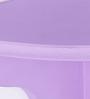 Manaus Wall Shelf In Purple by CasaCraft