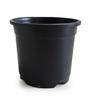 Chhajed Garden Sunrise Pot - Set of Ten