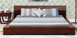 Clio Queen Bed in Dual Tone Finish by Woodsworth