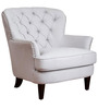 Classic Style Accent Chair in Beige Color by Afydecor