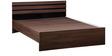 Cocoa Queen Bed in Black & Acacia Dark Matt Finish by Debono