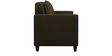 Cooper Two Seater Sofa in Brown Colour by ARRA