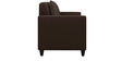Cooper Two Seater Sofa in Coffee Colour by ARRA