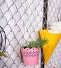 Color Palette Pink Hanging Planter