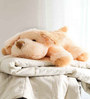 Novel Cream  Dog Baby Pillow Cum Soft Toy