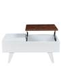 Daffodil Coffee Table in White Finish by Royal Oak