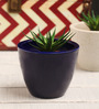 Decardo Navy Blue Ceramic Table Top Planter