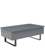 Delight Multifunctional Coffee Table with Storage in Grey Colour by Gravity