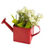 Deziworkz Square Watering Can Red