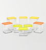 Disha Multicolour Storage Container - Set of 8