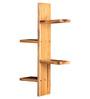 Vermillion Contemporary Wall Shelf in Brown by CasaCraft