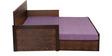Dollop Slider Bed in Purple Colour by Auspicious