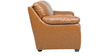 Doris Two Seater Sofa in Tan Brown Colour by Star India