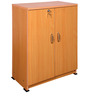 Double Door Shoe Cabinet in Oak Finish by Exclusive Furniture